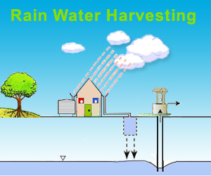 essay on rain water harvesting What is the importance of rainwater harvesting how to d rain water harvesting what are its benefits learn rain water harvesting in this essay and speech.
